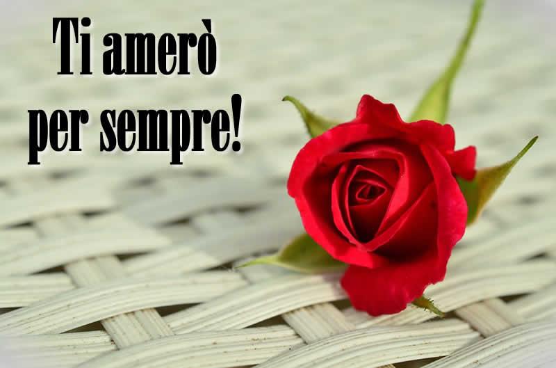 Super Immagine d'Amore da dedicare con rosa e frase d'amore. UM95